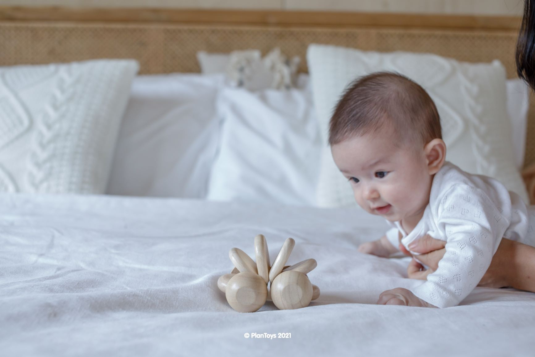 5268_PlanToys_BABY_CAR_-_NATURAL_Babies_Natural_Color_Fine_Motor_Coordination_Tactile_Visual_Emotion_6m_Wooden_toys_Education_toys_Safety_Toys_Non-toxic_0.jpg